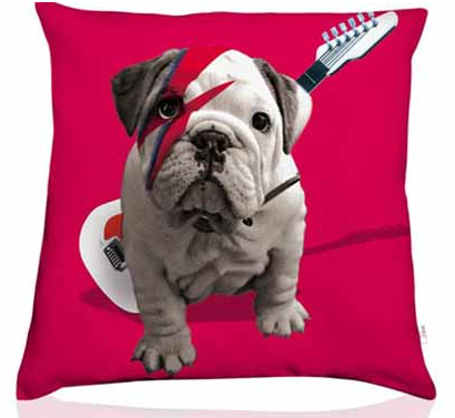 Coussin chien 2.png